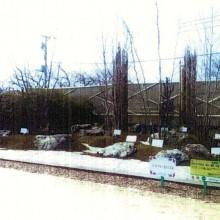 2008年第25回全国都市緑化祭・総合部門金賞 『静寂にして枯淡と、緑と、躍動、の庭』